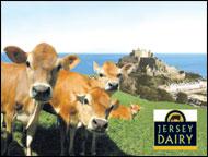 jersey-dairy.jpg