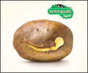 kerrygold-potato.jpg