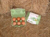 country-fresh-eggs