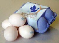 pr7-watercress-blue-duck
