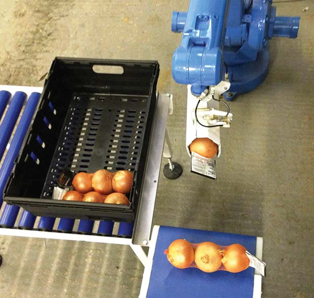 Image-1---Blu-Robots---An-economical-pick-&-place-or-palletising-solution-for-veg-packers