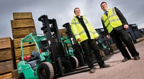 Savings as potato plant goes green – Mitsubishi LPG forklifts prove cleaner, greener and cheaper than diesel