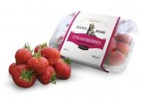 Strawberries-new-design-mock-up-060312-(2)