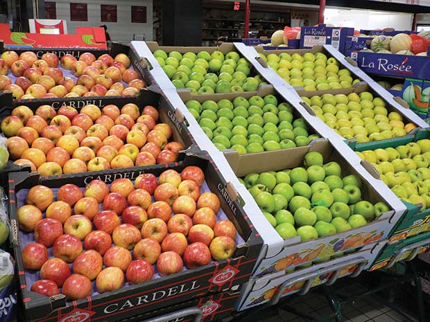 F8a-Fresh-Produce-The-Grocery-Trader
