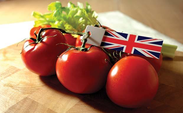 Tomato's-British-2-copy
