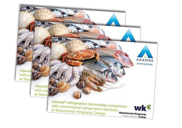 Fish-Report-Books