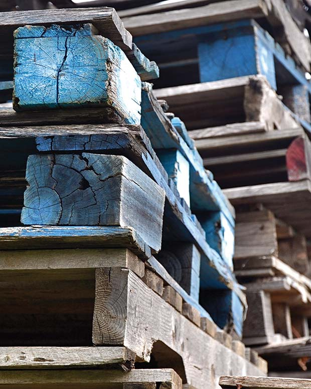 The-timber-industry-is-fully-aware-of-the-hygiene-issues-with-wooden-pallets.[6]