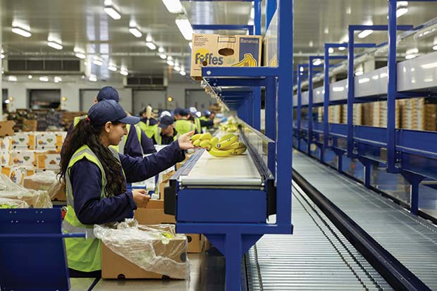 One-of-the-six-production-lines-at-Fyffes,-Normanton