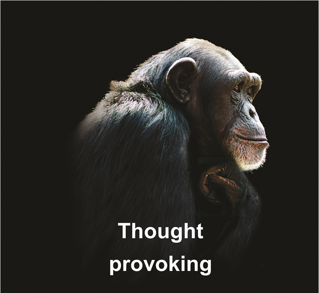 chimp thought provoking[3]